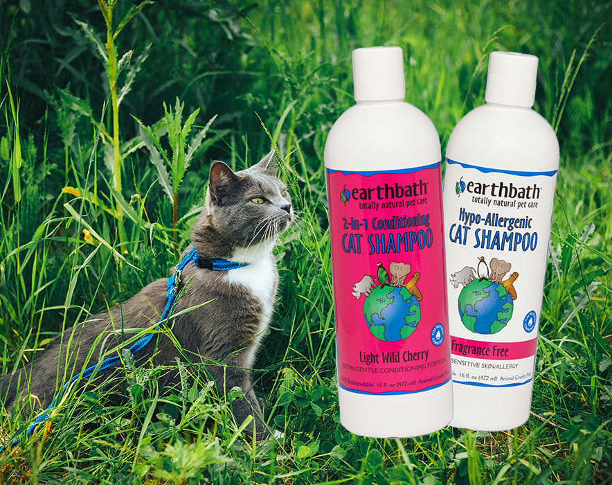 The Kitty Cleanup Helper: Earthbath Natural Cat Shampoo